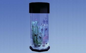 Octagon Aquarium Shopulace